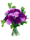 Birthday_purple_flowers