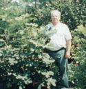 Jamesstineohiofigtree